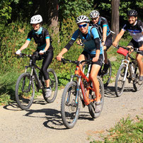 Vier Mountainbiker fahren auf Waldweg