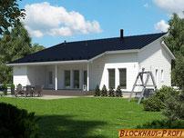 Holzhaus in massiver Blockbauweise - Massivholzhaus mit Pultdach - Hausbau