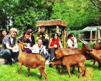Chilenische Seminar-Schüler besuchen unsere bedrohten chilenischen Juan-Fernandez Ziegen