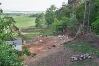 Bau der größten deutschen Kletter- und Zuchtanlage für die Girgentana Ziege (2009)
