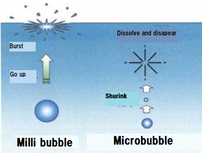Behaviour of microbubble