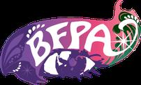 ボディジュエリーブライダルボディジュエリーフェイスペイント資格講座BFPA協会