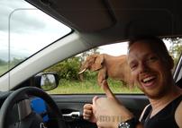 Rondreis Zuid-Afrika Safari Bobotie Reizen Olifant naast auto