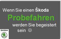 >> Das ŠKODA Probefahrterlebnis >>