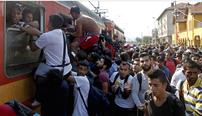 Flüchtlinge im Balkan, August 2015