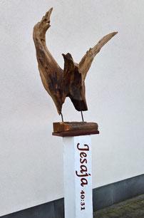 Arend - adelaar