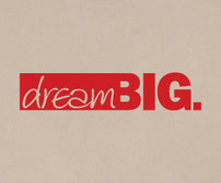 Dream Big vinyl wall art