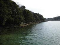 肥中漁港 波止の沖側の写真