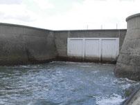 椎田干拓地海岸 水門の写真