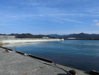 仙崎漁港 右側手前の波止 の写真