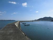 大海漁港 左側の波止の写真