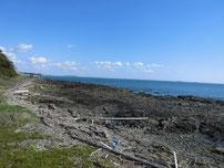 もじ少年自然の家周辺 左側の地磯の写真