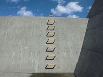 稲童漁港 梯子の写真