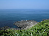川尻岬 小平坊 の写真