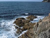 犬鳴岬 先端付近の写真