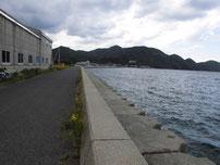 野波瀬漁港の右横の護岸 奥 の写真