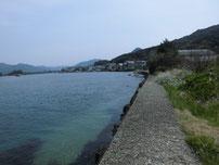 橋本川河口 左岸の護岸の写真