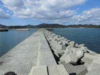 北九州市門司区のアオリイカの釣り場