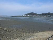 今川河口 河口域 の写真