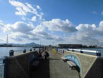 日明海峡釣り公園 釣り桟橋 の写真3