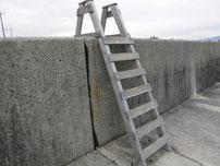中関ふ頭 梯子 の写真2