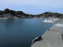 肥中漁港 左側の護岸の写真