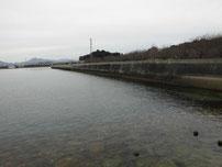 向島運動公園 右側 護岸 の写真