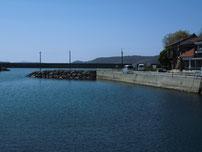 大井漁港 道路沿いの護岸の写真