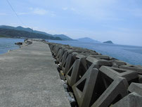 惣郷の港 外波止の写真