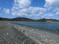 大積海岸 の写真