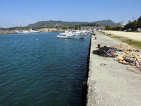大井浦漁港 港内の写真