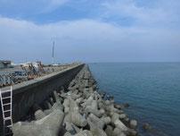 宇島港 道路際の護岸の写真