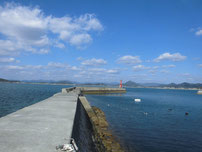 花香漁港 左側の波止の写真