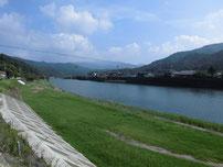 粟野川 国道・橋げた上流 の写真