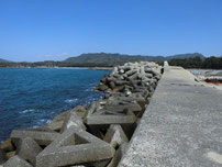 大井浦漁港 波止横の護岸の写真