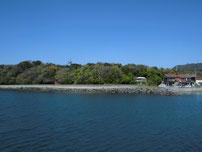大井漁港 石積の護岸の写真