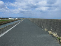 椎田干拓地海岸 道路の写真