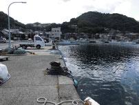 通漁港 港内の写真