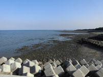 西八田漁港 波止付け根付近の写真