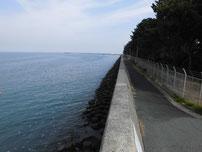 豊前発電所周辺 右側護岸の写真