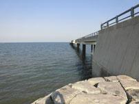 八津田漁港 桟橋 左側の写真