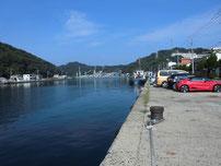 伊崎漁港 道路沿いの写真