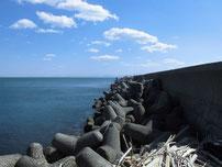 苅田南防波堤 道路沿いの護岸の写真