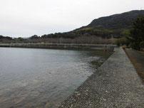 向島運動公園 テニスコート側 右の護岸 の写真