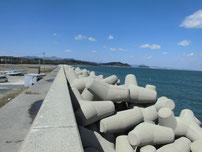 稲童漁港 テトラポットの写真