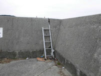 中関ふ頭 梯子の写真