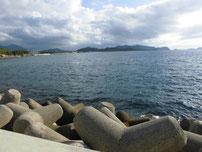 小串漁港 内側の堤防 テトラポットの写真
