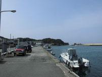 橋本川河口 左岸・上流側護岸の写真