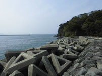 萩港 波止右側の写真