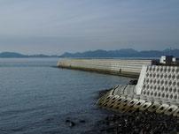 大浜岸壁 岸壁の写真2